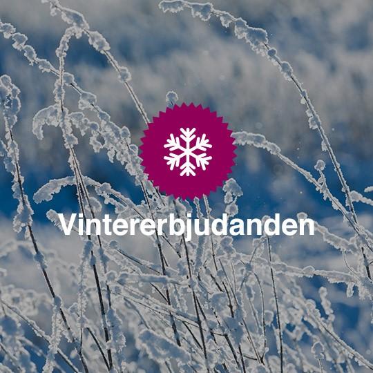 Vinter-erbjudanden