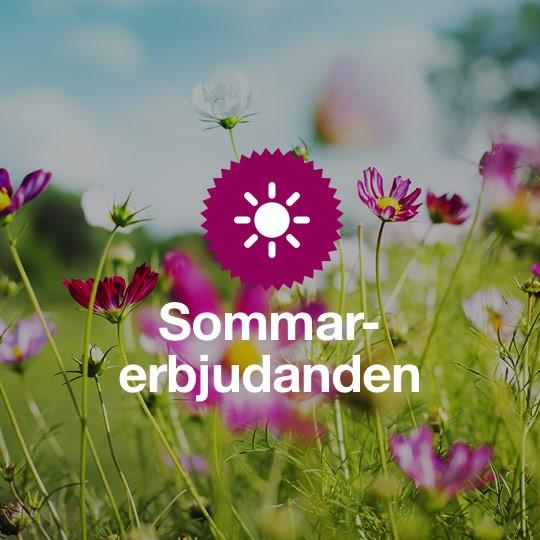 Sommar-erbjudanden